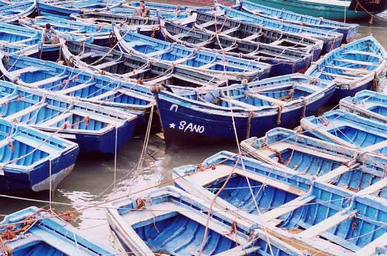 barque-divers-barques-port-essaouira-.jpg*550*364