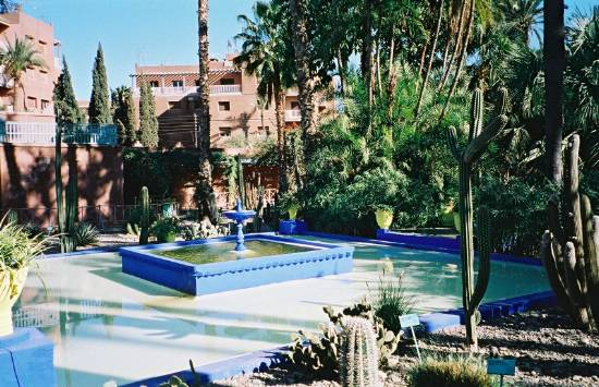 for Jardin marrakech
