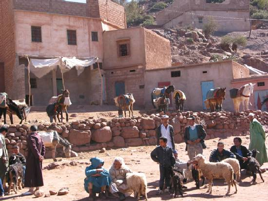 folklore-facade-divers-village-marrakech-.jpg*550*413