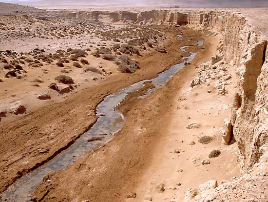 deserts-oued-plage-sud-goulimine-.jpeg*550*414