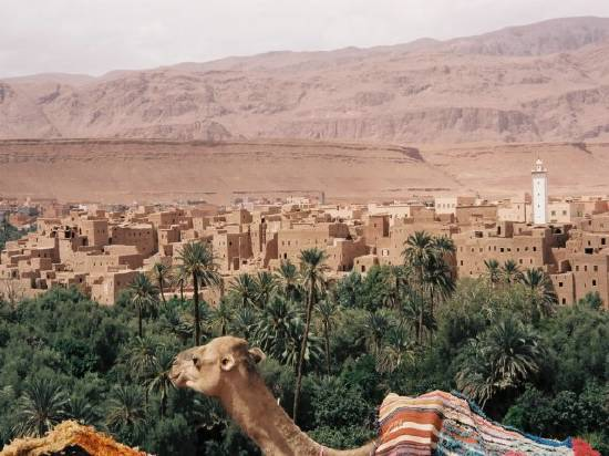 السياحة - السياحة في  المغرب .. Montagne-quel-vallee-zagora-maroc-